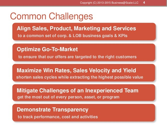 Common Challenges Align Sales, Product, Marketing and Services Maximize Win Rates, Sales Velocity and Yield Mitigate Chall...