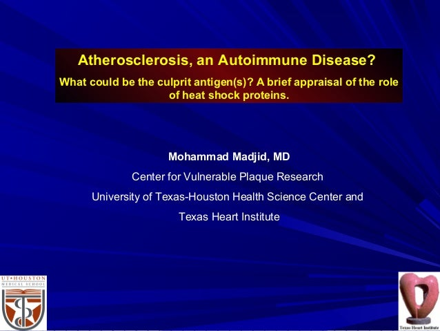 Atherosclerosis, an Autoimmune Disease? What could be the culprit antigen(s)? A brief appraisal of the role of heat shock ...