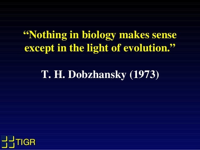 "TIGRTIGRTIGRTIGR ""Nothing in biology makes sense except in the light of evolution."" T. H. Dobzhansky (1973)"