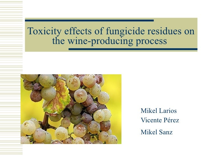 Toxicity effects of fungicide residues on the wine-producing process   Mikel Larios Vicente Pérez Mikel Sanz