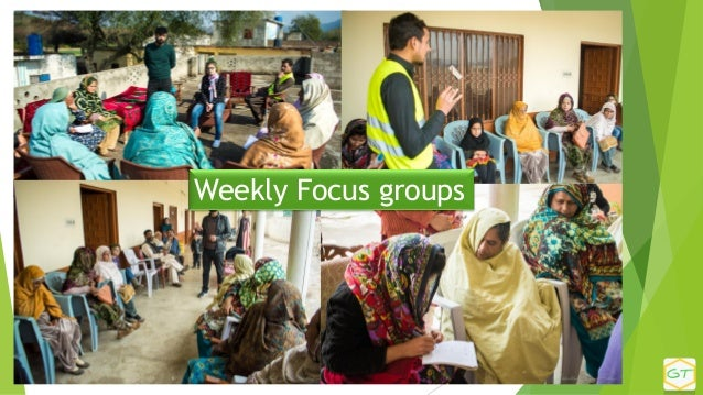 Weekly Focus groups