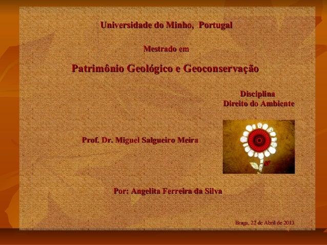 Universidade do Minho, Portugal Mestrado em  Patrimônio Geológico e Geoconservação Disciplina Direito do Ambiente  Prof. D...