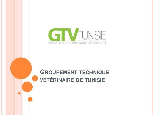 GROUPEMENT TECHNIQUEVÉTÉRINAIRE DE TUNISIE