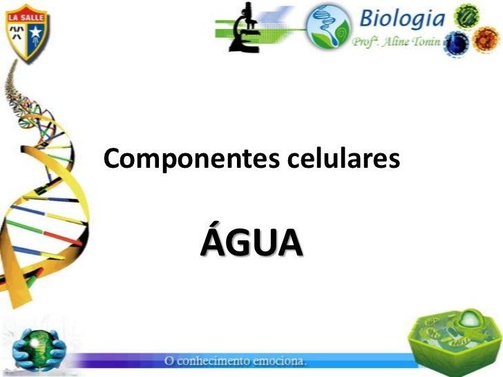 Componentes celulares      ÁGUA