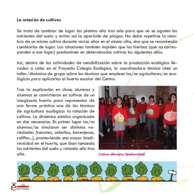 Gu a b sica nuestro huerto escolar ecol gico for Rotacion cultivos agricultura ecologica