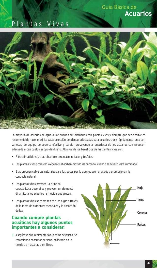 Deinbe Plantas de Hierba Artificial de Agua de pl/ástico bajo el Agua del Acuario Ornamento Rojo