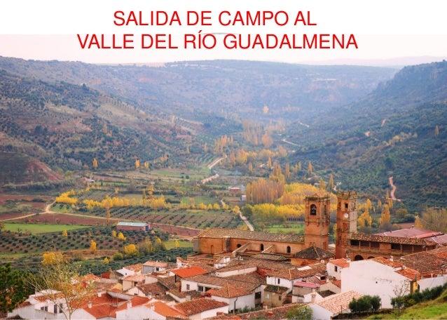 SALIDA DE CAMPO AL VALLE DEL RÍO GUADALMENA