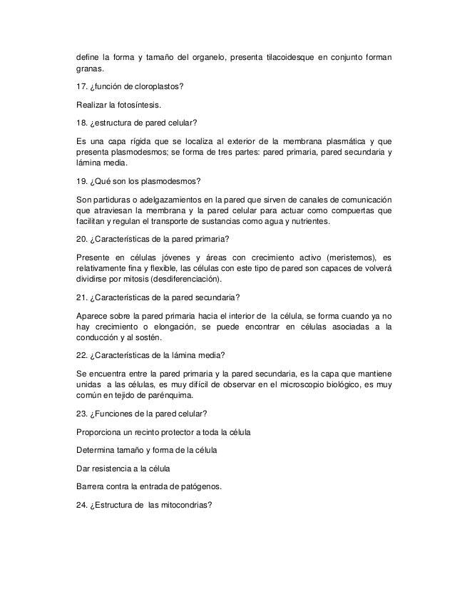 Excelente Guía De Estudio Para La Anatomía Y La Fisiología 1 Adorno ...