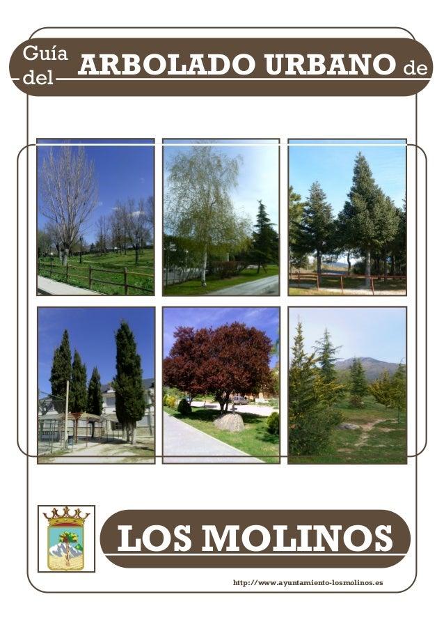 LOS MOLINOS Guía del ARBOLADO URBANO de http://www.ayuntamiento-losmolinos.es