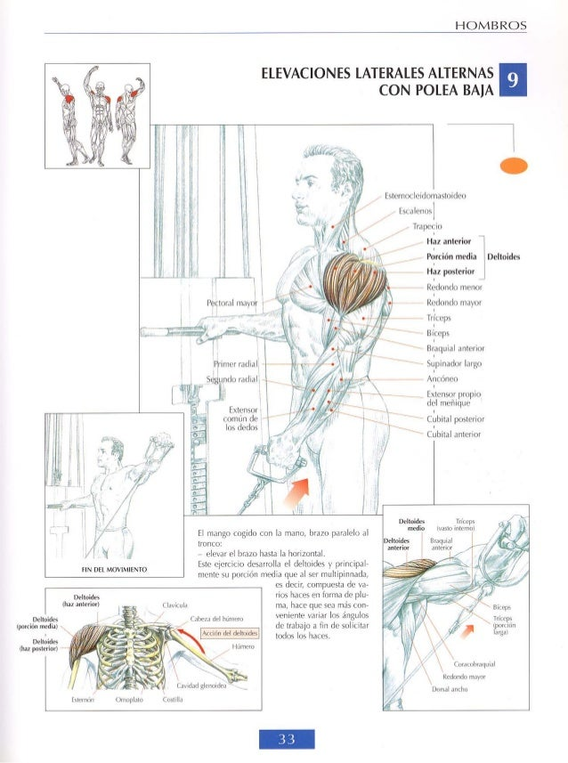 Frederic Delavier Strength Training Anatomy first and second edition