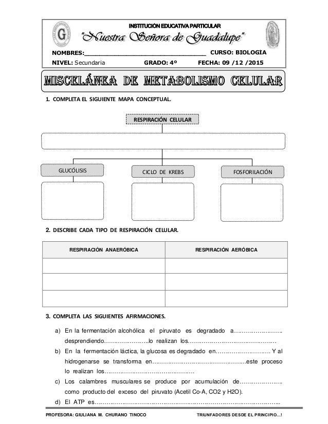 PROFESORA: GIULIANA M. CHURANO TINOCO TRIUNFADORES DESDE EL PRINCIPIO…! CURSO: BIOLOGÍA NIVEL: Secundaria GRADO: 4º FECHA:...