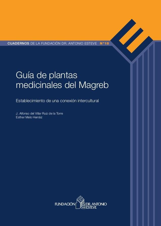 CUADERNOS DE LA FUNDACIÓN DR. ANTONIO ESTEVE Nº18 Guía de plantas medicinales del Magreb Establecimiento de una conexión i...