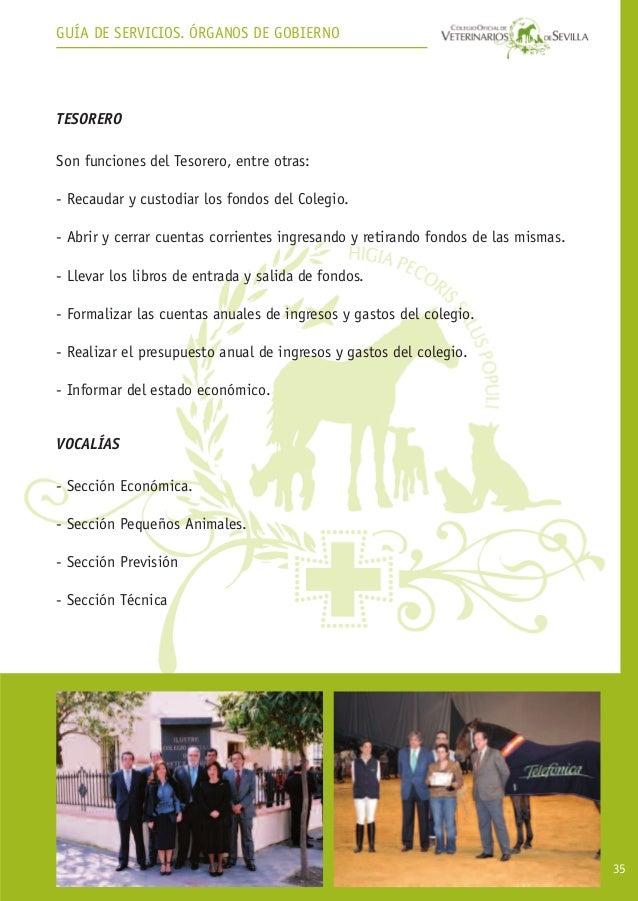 Gu a de servicios colegio de veterinarios de sevilla for Convenio colectivo oficinas y despachos sevilla