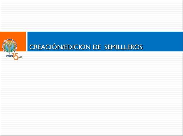 CREACIÓN/EDICION DE SEMILLLEROS