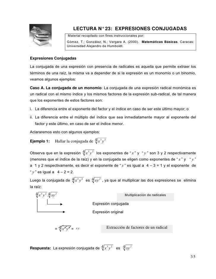 GuíA Didactica Y Lecturas Radicales