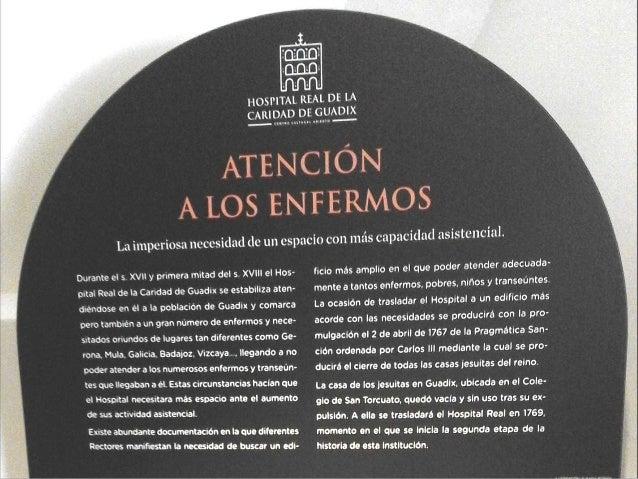 La Dra. Encarnaci�n Cambil, profesora de la Universidad de Granada y autora del proyecto expositivo del museo