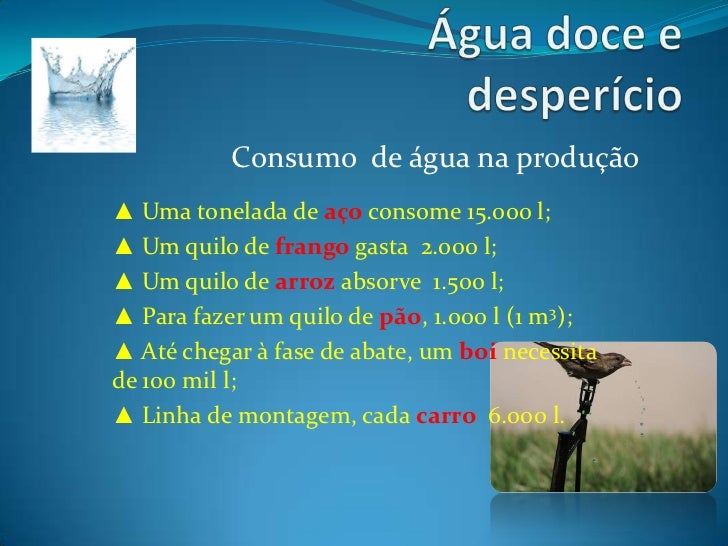 Água doce e desperdício textos 02 Slide 2