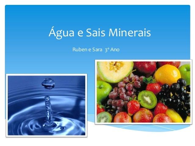 Água e Sais Minerais    Ruben e Sara 3º Ano