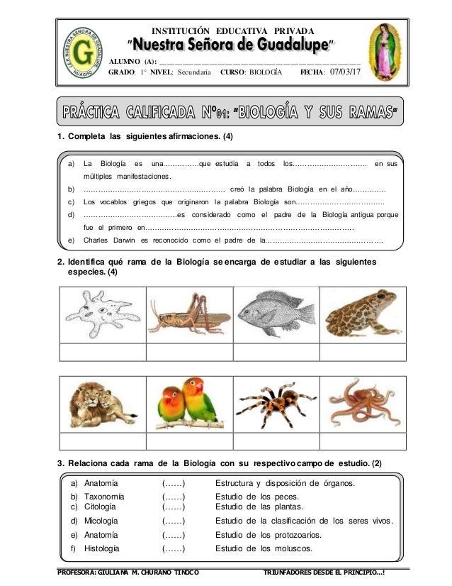 Guía i biología y sus ramas-17