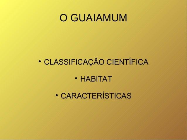 O GUAIAMUM  CLASSIFICAÇÃO CIENTÍFICA  HABITAT  CARACTERÍSTICAS