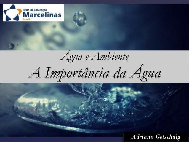 Água e Ambiente A Importância da Água Adriana Gotschalg