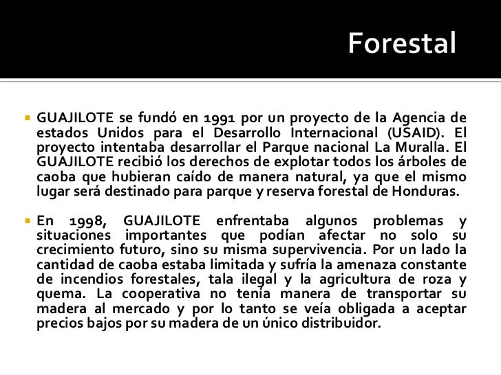 guajilote cooperativo forestal swot Guajilote cooperativo forestal, honduras guajilote (pronounced wa-hee-low-tay) cooperativo forestal was a forestry cooperative that operated out of chaparral, a small village located in the buffer zone of la muralla national park in honduras' olancho.