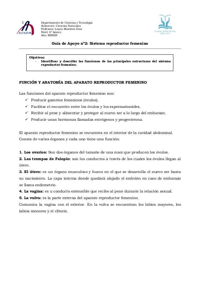 Guía nº2 ciencias naturales 6º básico 2013 iº sem sist reprod femeni…