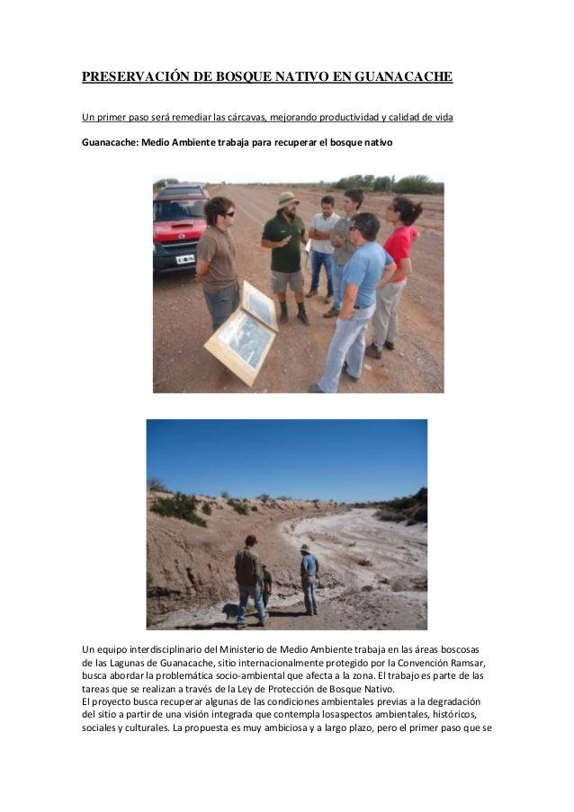 PRESERVACIÓN DE BOSQUE NATIVO EN GUANACACHEUn primer paso será remediar las cárcavas, mejorando productividad y calidad de...
