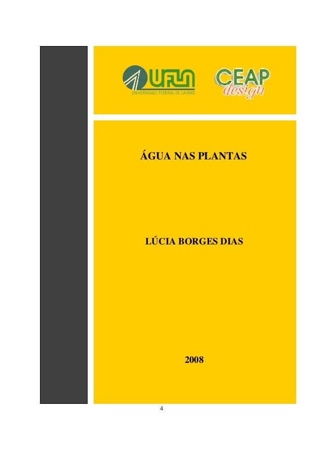 4 ÁGUA NAS PLANTAS LÚCIA BORGES DIAS 2008