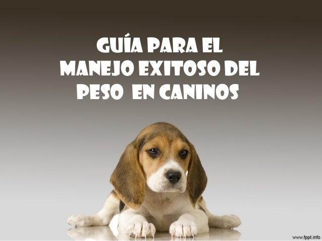 GUÍA PARA EL MANEJO EXITOSO DEL PESO en caninos