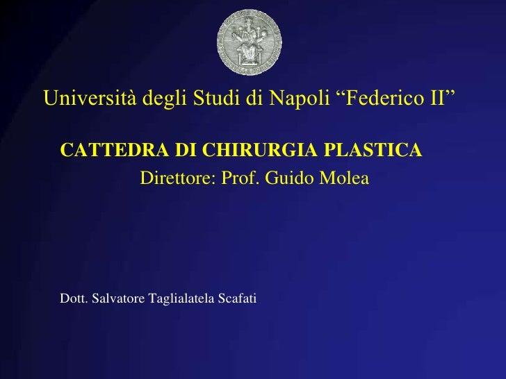 """Università degli Studi di Napoli """"Federico II"""" <br />CATTEDRA DI CHIRURGIA PLASTICA<br />      Direttore: Prof. Guido Mol..."""