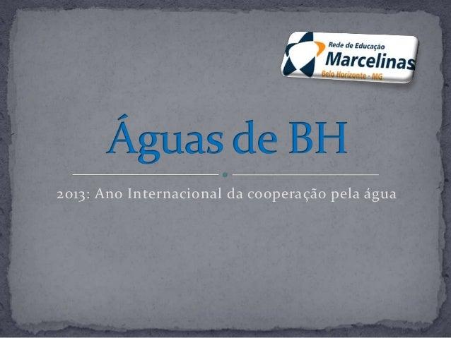 2013: Ano Internacional da cooperação pela água