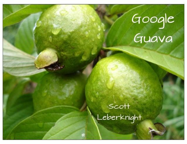 GoogleGuavaScottLeberknight