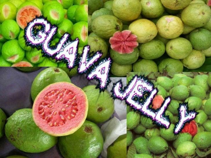 guava essay in english