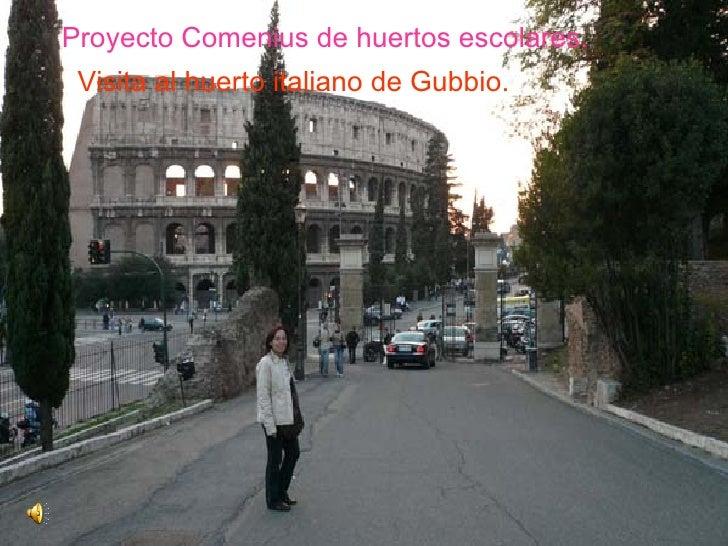 Proyecto Comenius de huertos escolares.  Visita al huerto italiano de Gubbio.