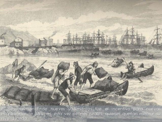El descubrimiento de nuevos yacimientos fue el incentivo para nuevasmigraciones de chilenos, esta vez peones rurales, quie...