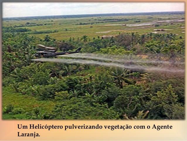    A Guerra arrasou campos agrícolas, destruiu casas e  vilas; provocou prejuízos econômicos gravíssimos no  Vietnã, com...