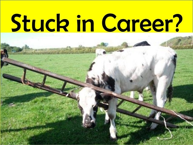 Stuck in Career?