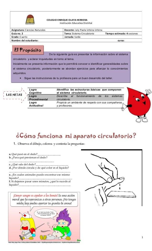 ¿Cómo funciona mi aparato circulatorio? 1. Observa el dibujo, colorea y contesta la preguntas: a. Qué pasó en el dedo?____...