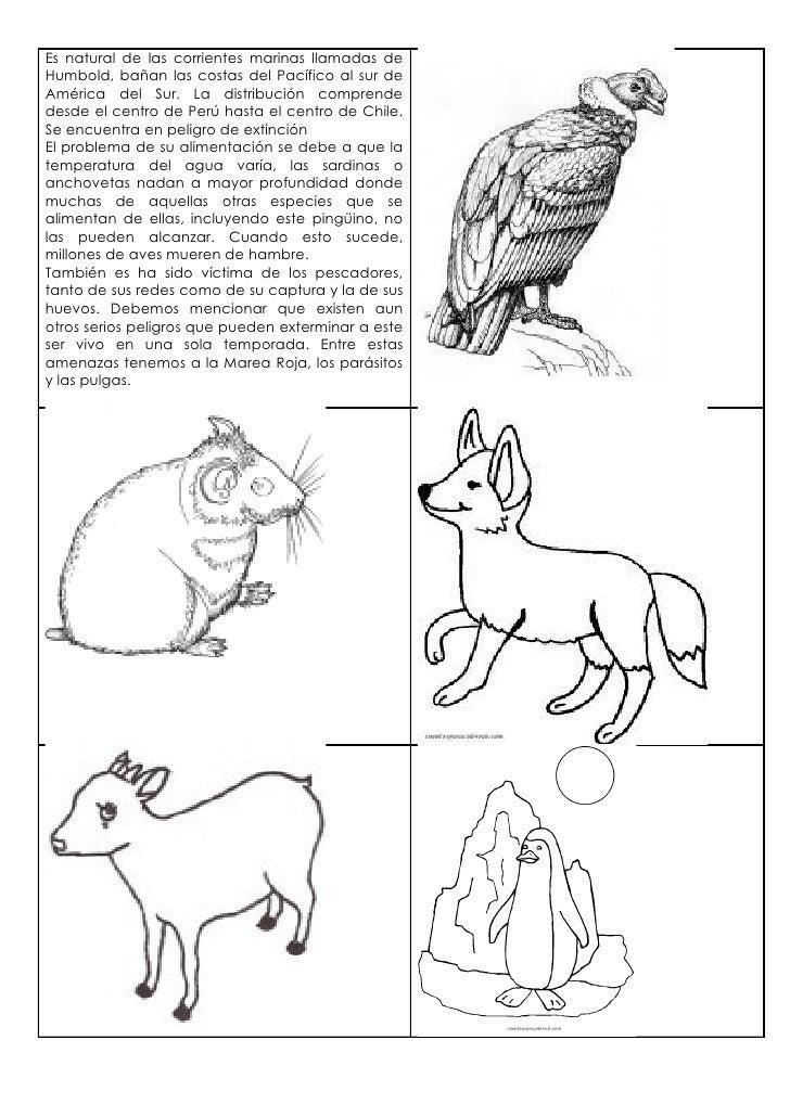 Guia los animales y su hábitat 2º básico