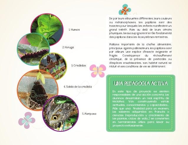 «#El#agua#en#el#bosque#no#se#desperdicia,#sirve#a#todos.#La#usan#los#arboles,#las# flores,#los#animales,#no#entiendo#porqu...