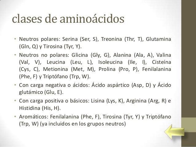 clases de aminoácidos• Neutros polares: Serina (Ser, S), Treonina (Thr, T), Glutamina  (Gln, Q) y Tirosina (Tyr, Y).• Neut...