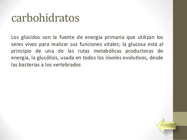 carbohidratosLos glúcidos son la fuente de energía primaria que utilizan losseres vivos para realizar sus funciones vitale...