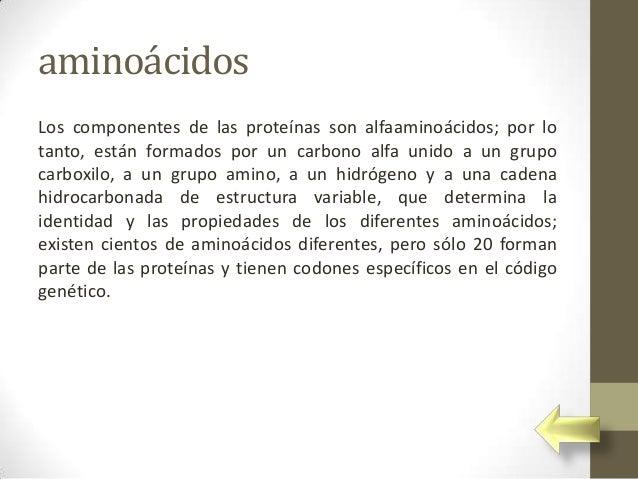 aminoácidosLos componentes de las proteínas son alfaaminoácidos; por lotanto, están formados por un carbono alfa unido a u...
