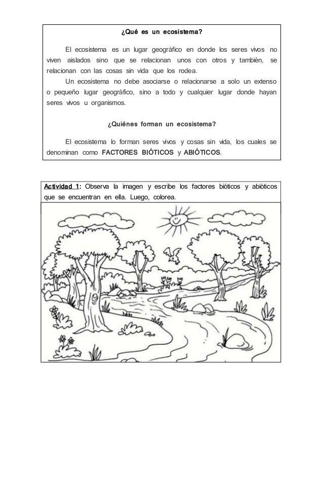 Guia 1 Ecosistema