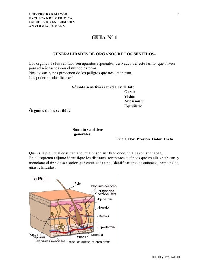 UNIVERSIDAD MAYOR                                                                          1 FACULTAD DE MEDICINA ESCUELA ...