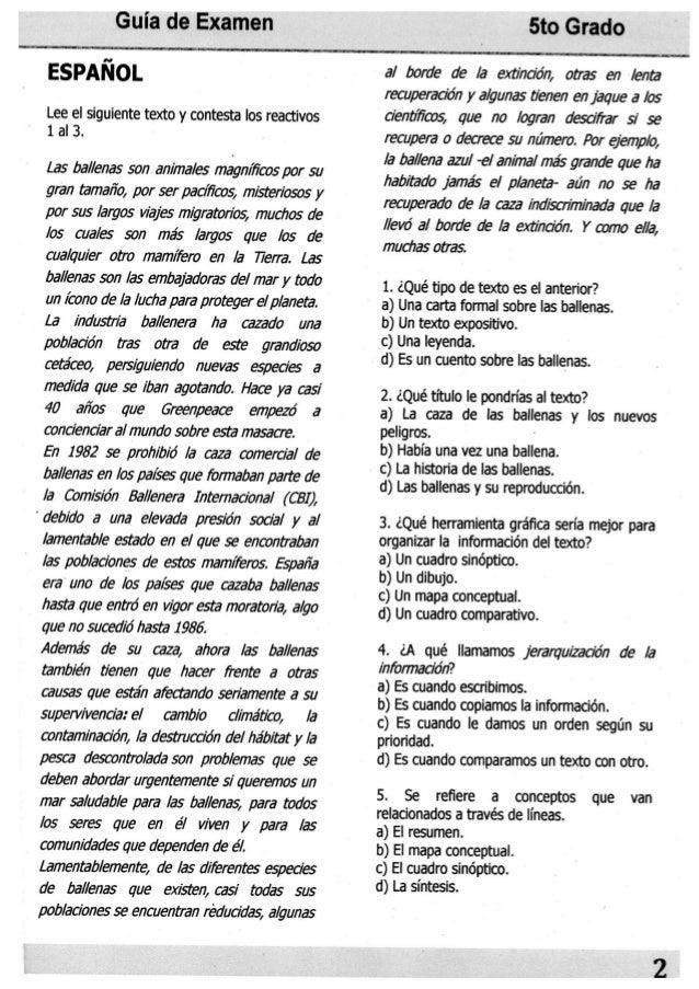 Guia de Examen  ESPANOL  Lee el siguiente texto y contesta Ios reactivos 1 al 3.  Las ballenas son an/ 'ma/ es magn/ ficos ...