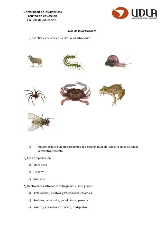 Universidad de las américas Facultad de educación Escuela de educación Guía de los artrópodos I) Identifica y encierra en ...