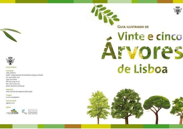 Vinte e cinco árvores de Lisboa Apresentação Na cidade, as árvores melhoram a qualidade do ar, produzindo oxigénio através...