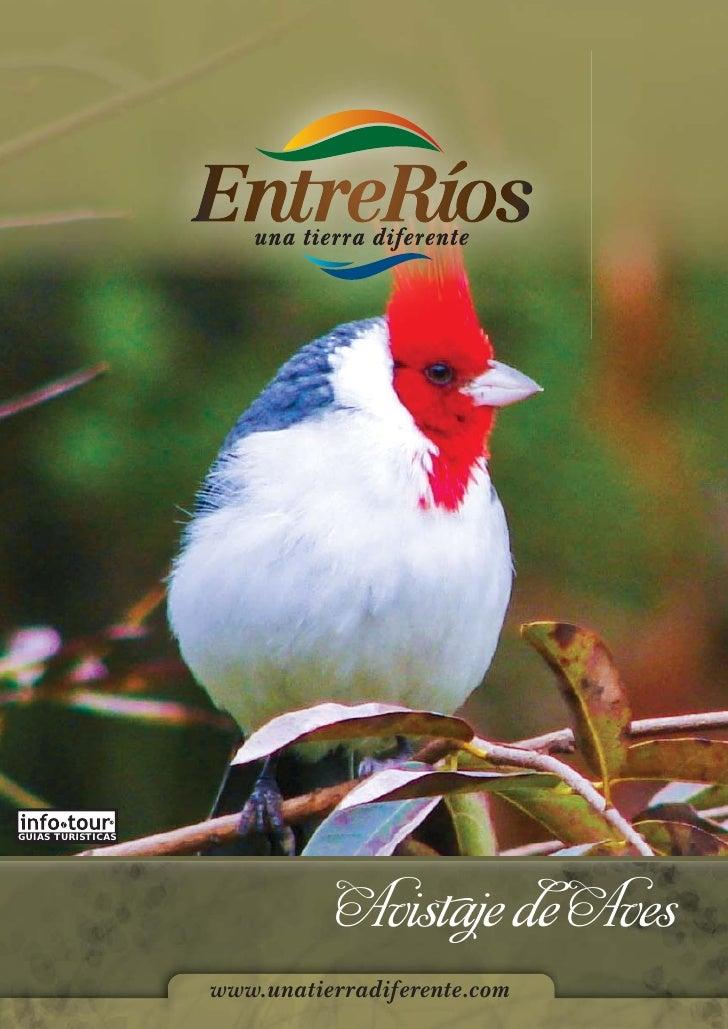 GUIAS TURISTICAS                             Avistaje de Aves                   www.unatierradiferente.com